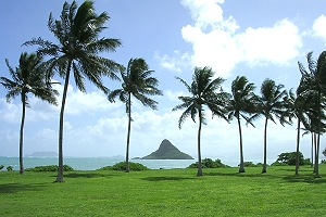 reise hawaii, urlaub oahu, deutschsprachige tour hawaii, hawaii urlaub, sightseeing oahu